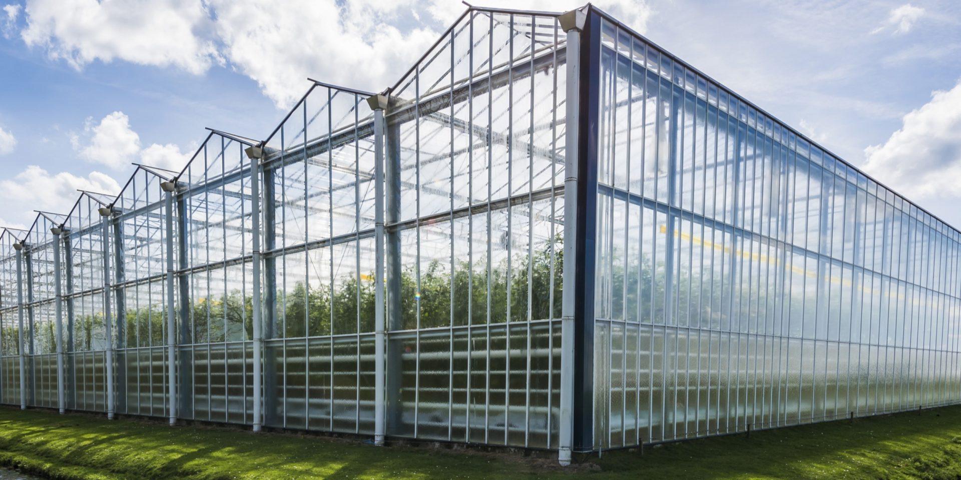 Skleník typu Venlo na hydroponické pěstování zeleniny